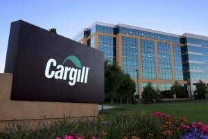 Cargill-logo-banner-810x432[1]